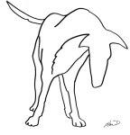 dog-macd1-2015